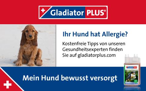 Banner Allergie